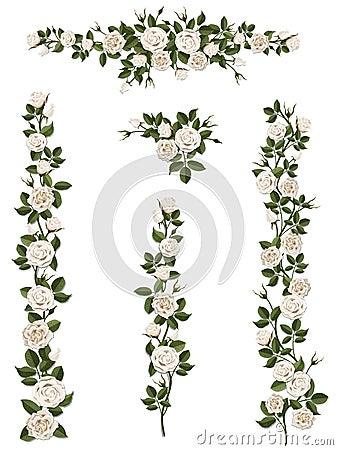 Free Set Brushes Flowers Climbing White Roses Royalty Free Stock Images - 66942509