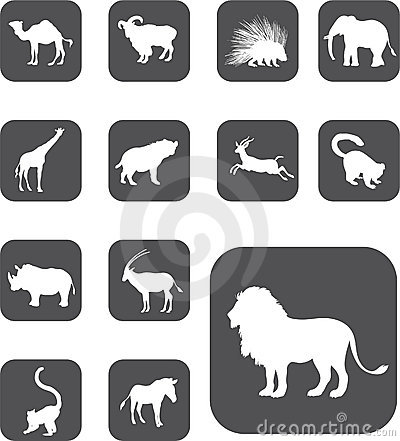 Set buttons - 25_Z. Animals