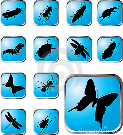 Set buttons - 37_X. Insects
