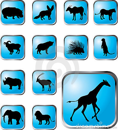 Set buttons - 38_X. Animals