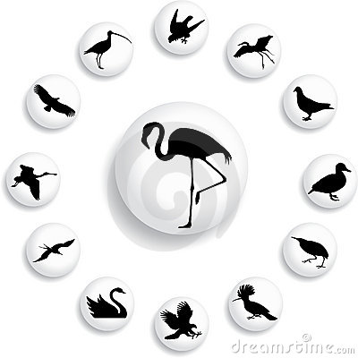 Set buttons - 39_B. Birds