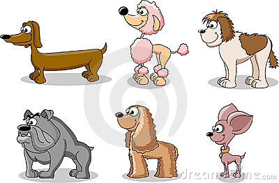 Set cartoon dogs of different breeds,vector