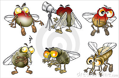 Set of cartoon flies
