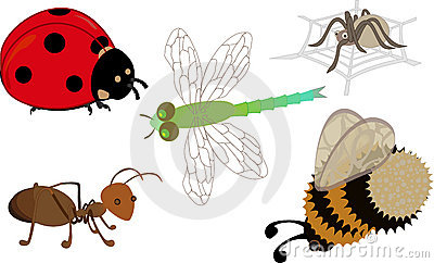 A set of cartoon insects