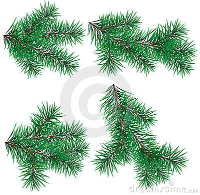 Set  Christmas tree branch for decorate