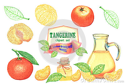 Set Of Clipart Freehand Drawing Tangerines-01 Stock Illustration ...
