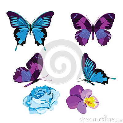 Free Set Collection Of Blue And Violet Butterflies And Flowers Isolated On White Background. Vector Illustration Stock Images - 107799314