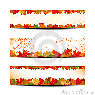 Set of Colorful Autumn Leaves Banner