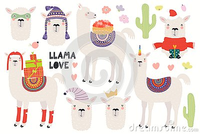 Set of cute llamas Vector Illustration