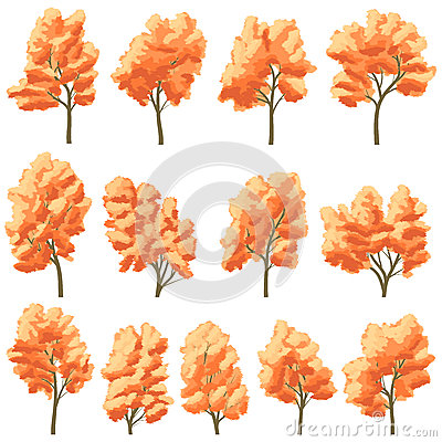 Set of deciduous trees in autumn.
