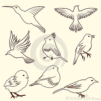 Set des differnet Skizzevogels