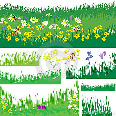 Set of design elements with grass, flowers and bee