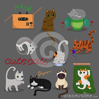 Set of different cats in different poses with on grey background. Vector illustration Cartoon Illustration