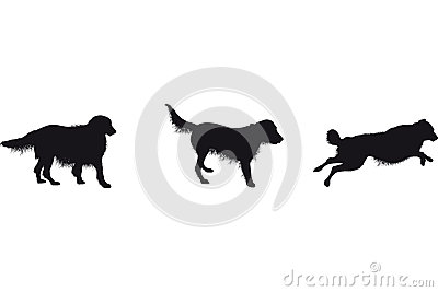 Set of dog silhouettes