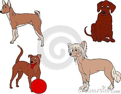 Set dogs