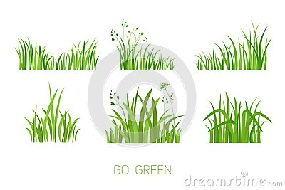 Set Eco grass Vector Illustration