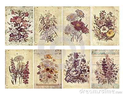 Set of eight shabby vintage floral cards with textured layers and text.