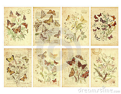 Set of Eight Vintage Style Butterfly Tags Stock Photo