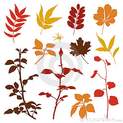 Set of fall plants silhouettes.