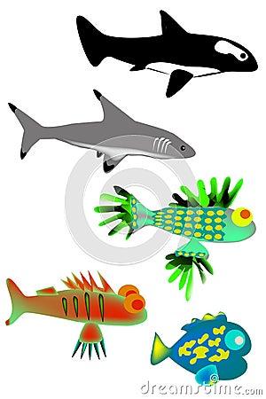 A set of fish