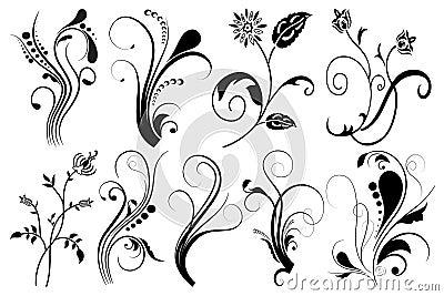 Set of floral elements for design,
