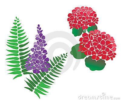 Set of Flower and fern Vectors