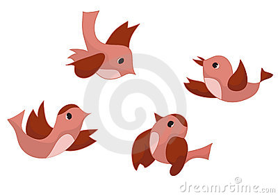 Set of four birds - vector
