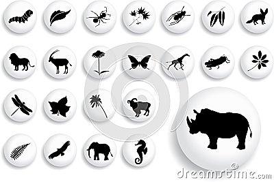 Set för natur för 16 knappar för b stor