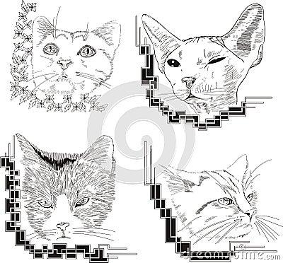 Set of framed cat sketches