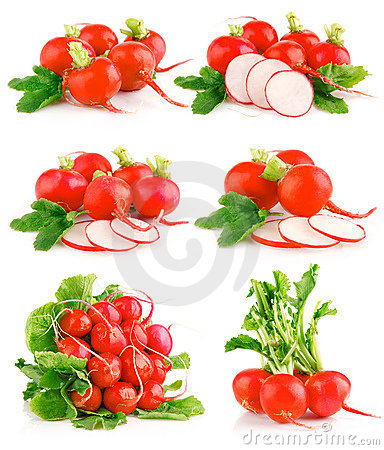 Free Set Fresh Red Radish Vegetables With Green Leaves Royalty Free Stock Photos - 13689218