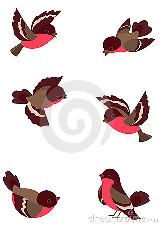 Free Set Funny Birds Royalty Free Stock Image - 12967906