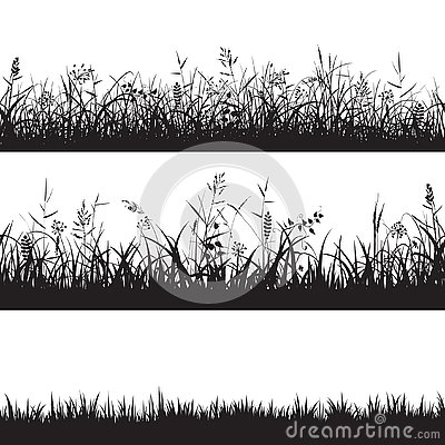 Set of grass seamless borders. Black silhouette of grass, spikes and herbs. Vector. Vector Illustration