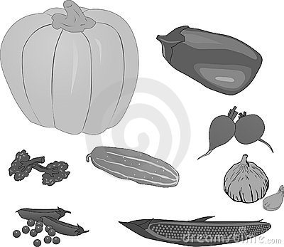 Set of grey vegetables