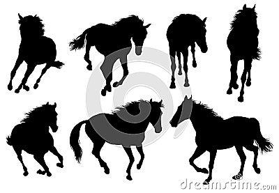 Set of a horse.