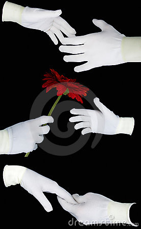 Set of human hands in white gloves