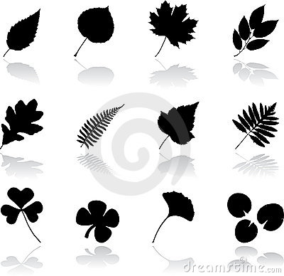 Set icons - 12. Leaves