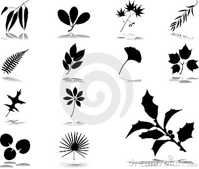 Set icons - 40. Leaves