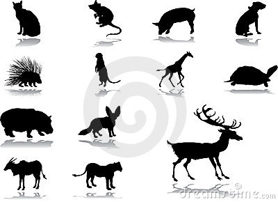 Set icons - 54_. Animals
