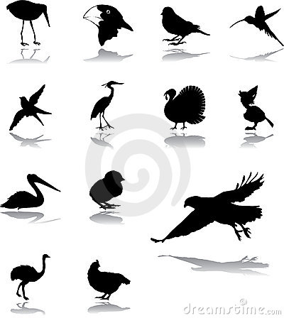Set icons - 94. Birds