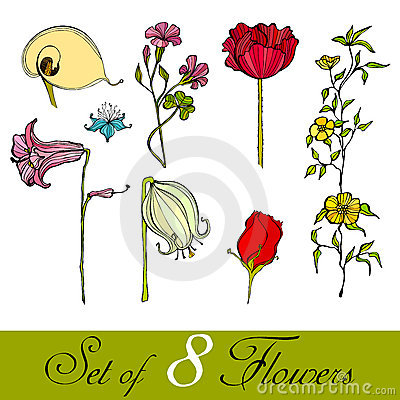 Set of illustrated cute flowers