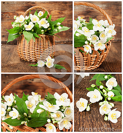Set of images with jasmine in wicker basket