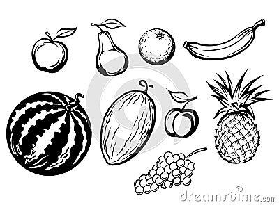Set of isolated fresh fruits