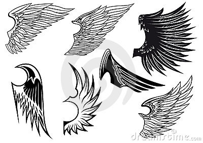 Set of isolated heraldic wings