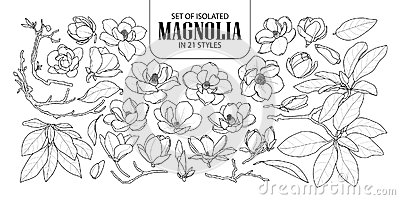 Set of isolated magnolia in 21 styles. Cute hand drawn flower vector illustration in black outline and white plane. Vector Illustration
