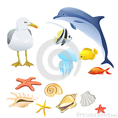 Set of marine fauna isolated