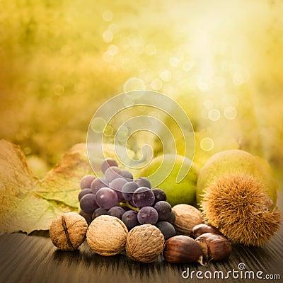 Free Set Of Autumn Fruit Royalty Free Stock Photo - 21064945