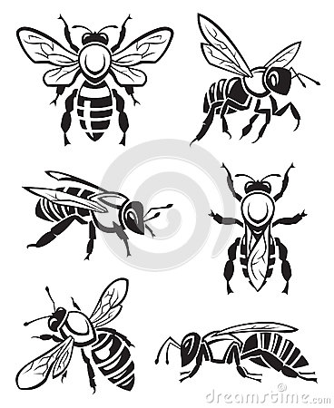 Free Set Of Bees Stock Photography - 45534962