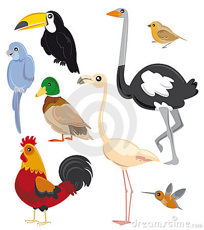 Free Set Of Birds Stock Photography - 6558712