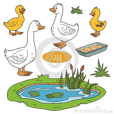 Free Set Of Cute Farm Animals And Objects, Vector Goose Family Royalty Free Stock Photography - 55061737