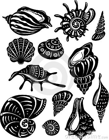 Free Set Of Decorative Shell Royalty Free Stock Image - 10655936